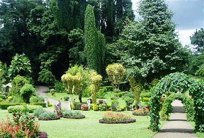 Созданный в 1821 г, сад расположен в