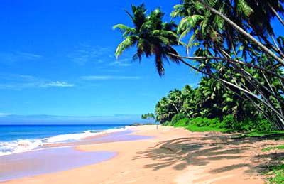 Побережье Шри-Ланки