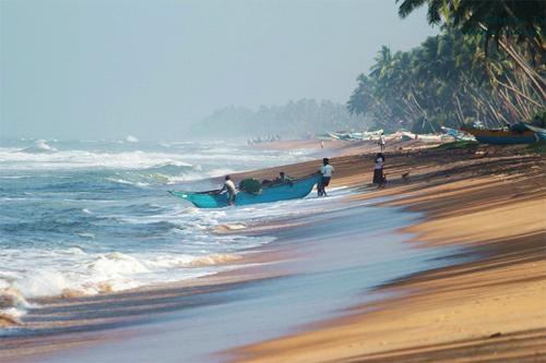 Villa ocean view wadduwa 3* (ваддува,шри-ланка) цены.